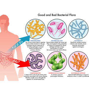 Do you have an unhealthy gut?