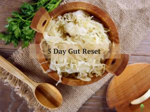 5 Day Gut Reset -drblessinga.com