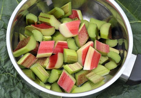 Rhubarb and Apple Salad - 4 Anti-Inflammatory Rhubarb Recipes